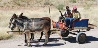 Emigración rural